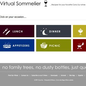 Awesome new tool: Virtual Sommolier from Cono Sur!