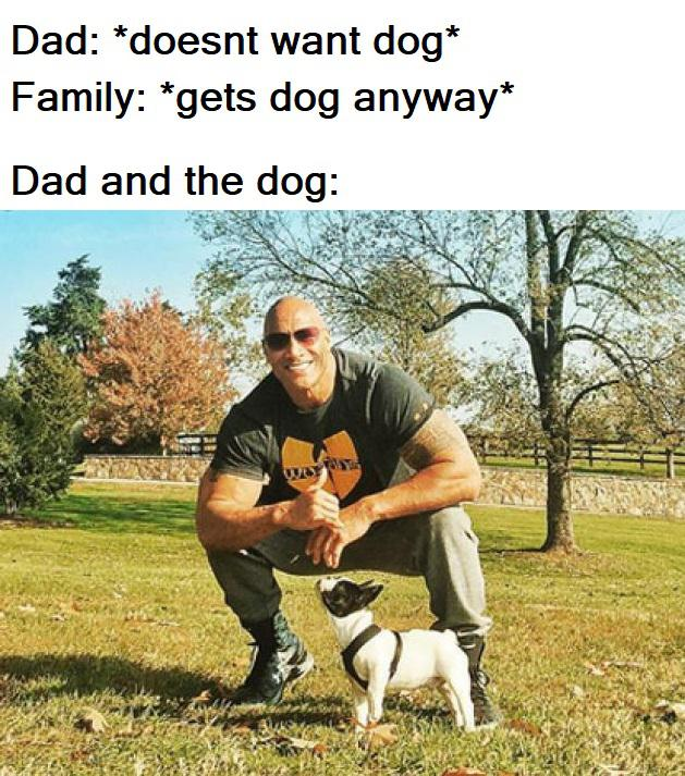50 Wholesome Clean Memes That Bring The Feels Happy Memes Funny Relatable Memes Funny Memes