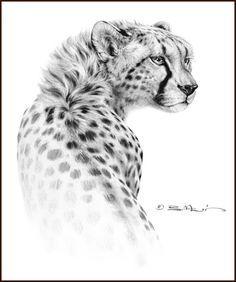 cheetah/tattoo - Google Search