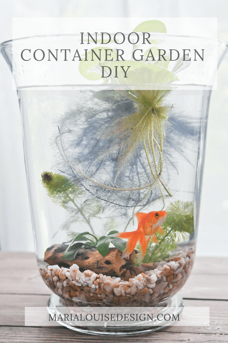 Indoor Container Garden DIY is part of Cheap Container garden - It's known that water and fish bring calm to any home decor  Learn how to make your own indoor container garden, with or without fish!