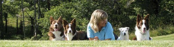 Susan Garrett Dog Agility Say Yes Dog Training Positive Dog