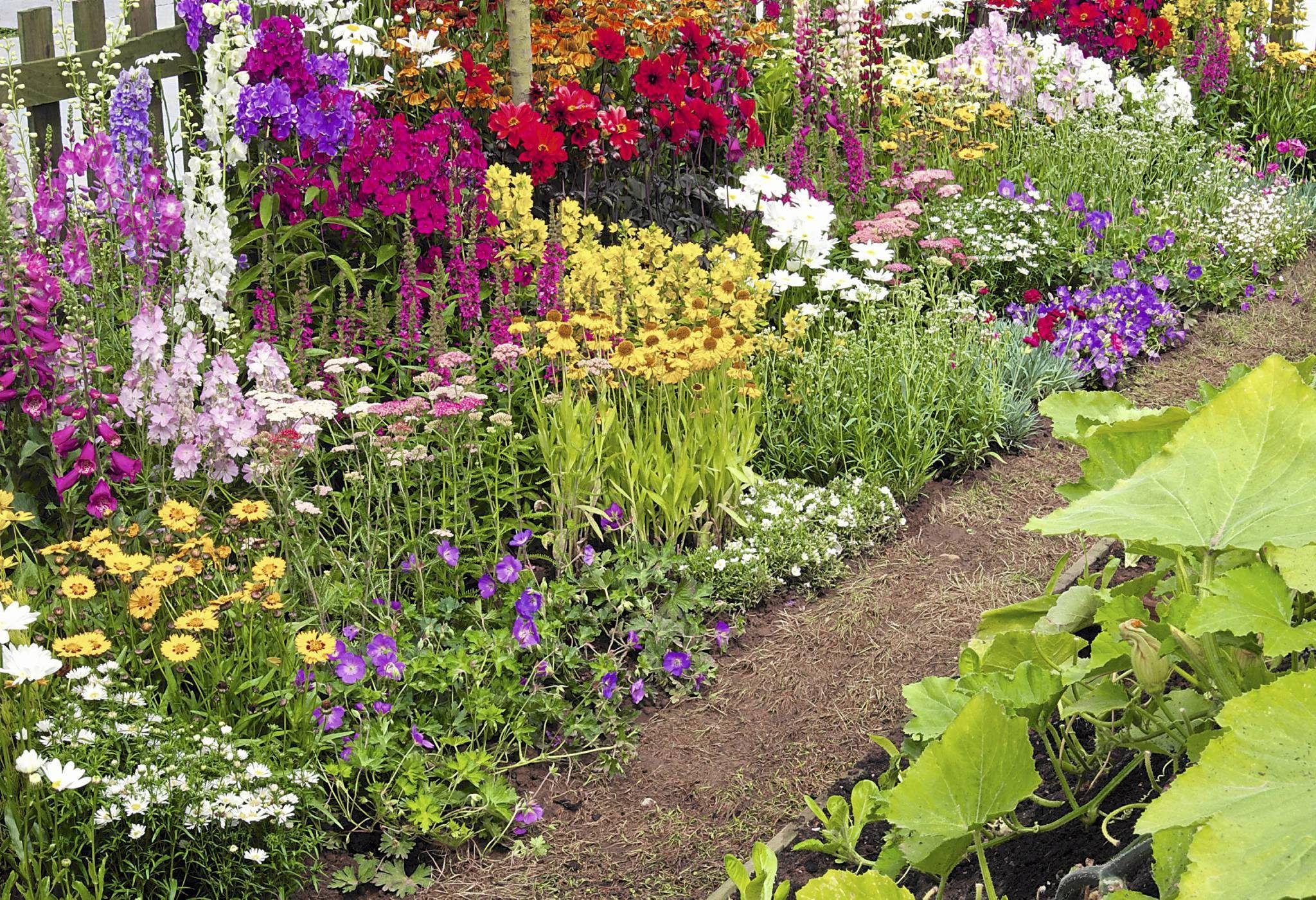 Rabata Rustykalna Na Slonecznym Miejscu Plants Garden