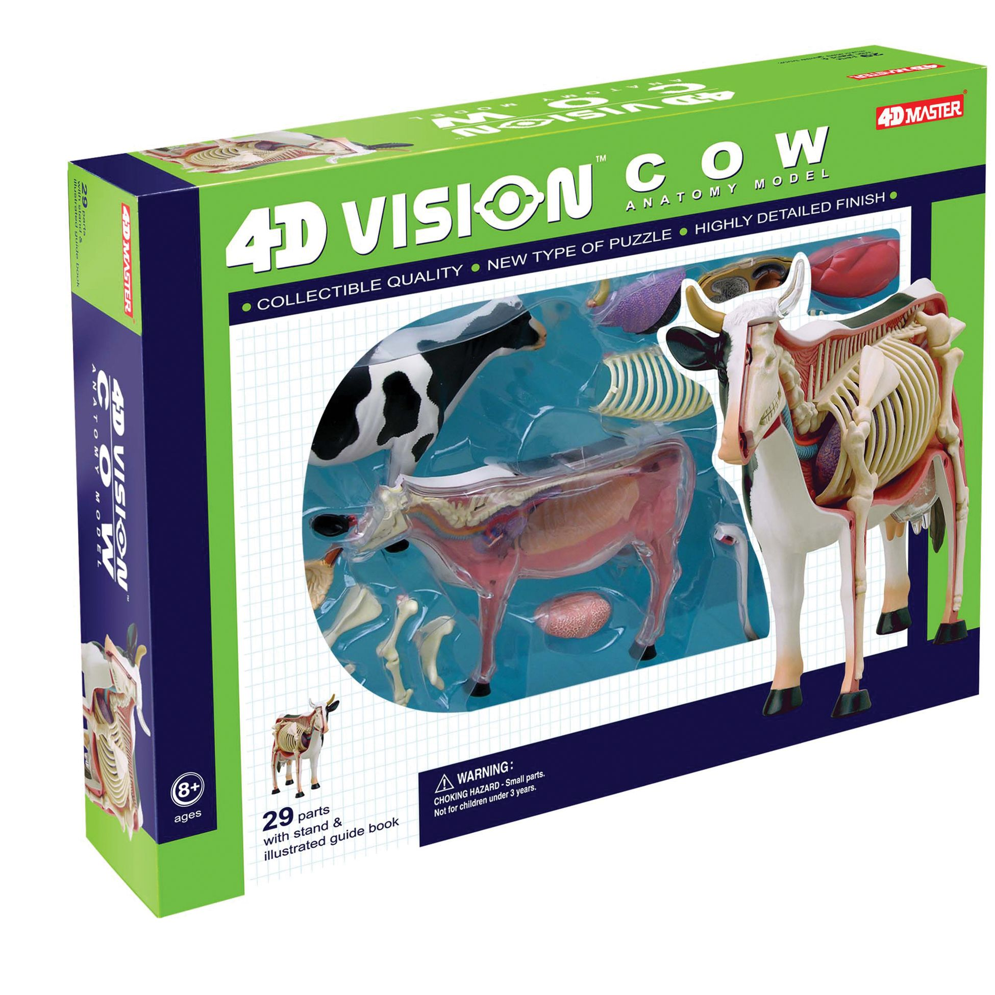 Build your own anatomy model of the cow! This exceptionally detailed ...