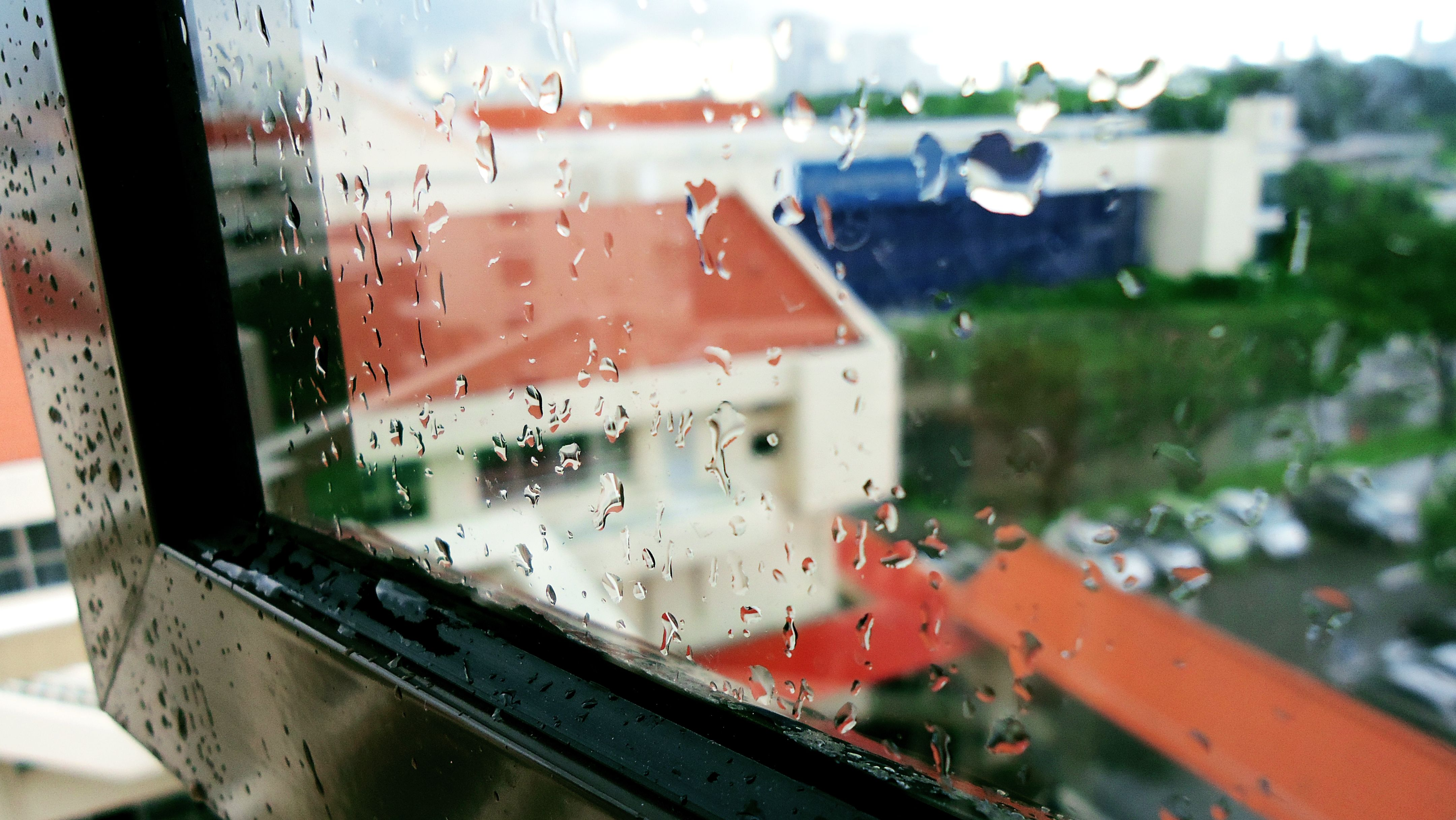 Rain Through My Lens: What It Means To Me