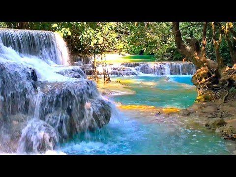 Waterfall & Jungle Sounds - Relaxing Tropical Rainforest