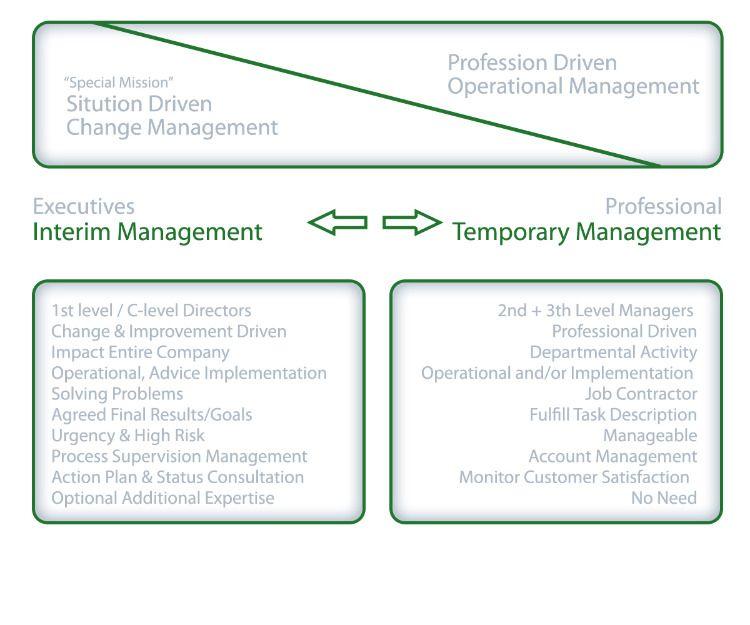 Professional Operational Temporary Management Versus Executive Interim Management Change Management Management Problem Solving