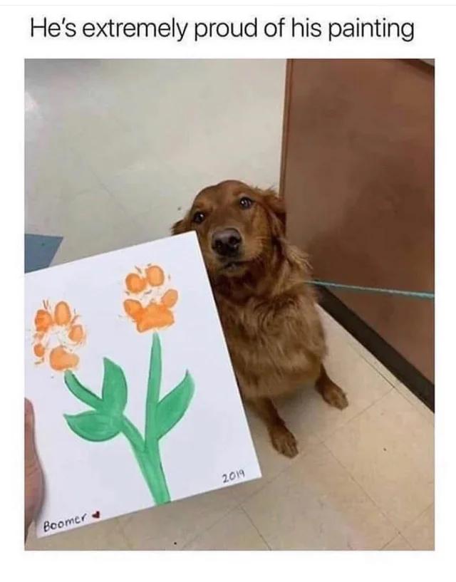 Doggy Reddit