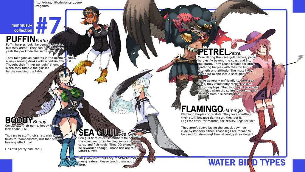 Monster Musume Water Bird Species By Dragonith  Monster -2729