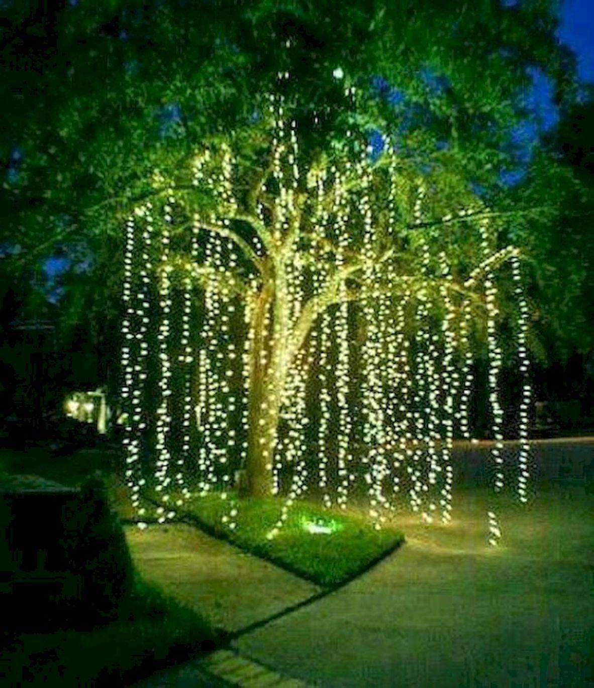 Outdoor Christmas Lights Decorations Ideas 46 Christmas Lights
