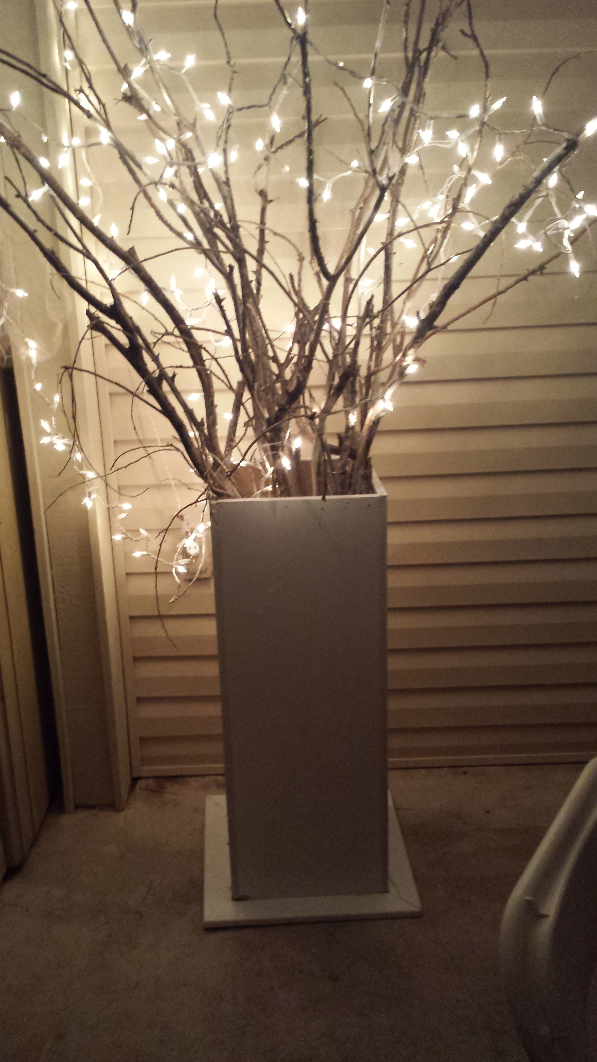 lighted twig trees- Free banches, wood from Lowes and string lights= USD 25 per tree, USD 1000 Wedding ...