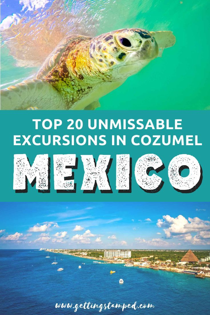 Top 20 Things To Do In Cozumel Can T Miss Excursions Cozumel