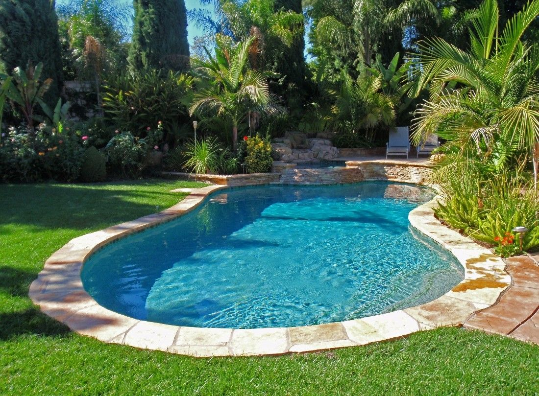 A Free Form Swimming Pool With Grass Surrounding It Backyard