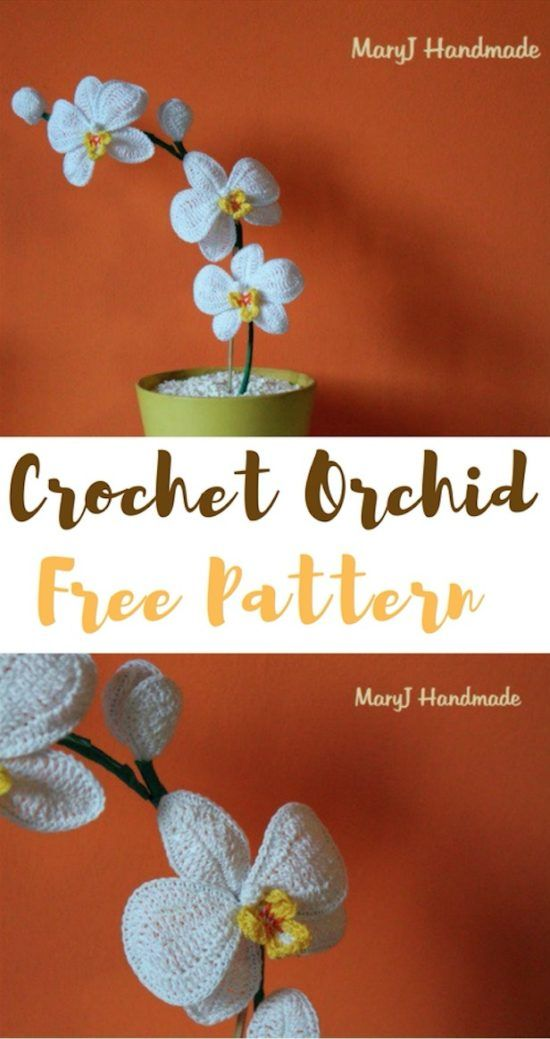Crochet Orchid Flower Pattern Video Tutorial Easy Instructions ...