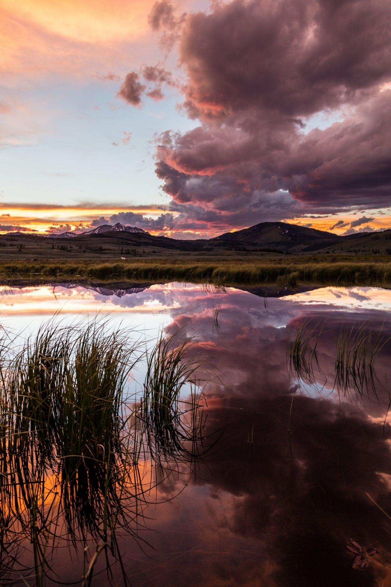 Yellowstone Sunset Free Stock Photo Android wallpaper