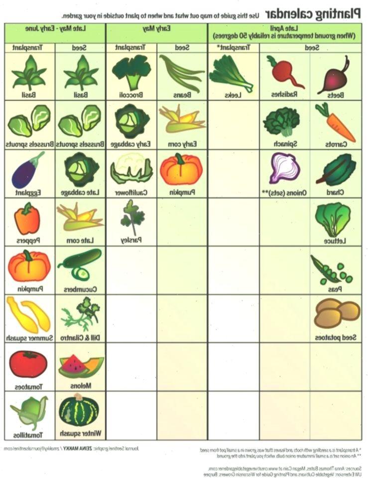 Spring Garden Calendar When To Plant Fruits And 400 x 300