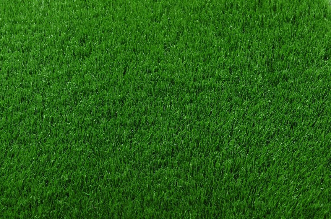 Grama 3 Texturas De Tudo Pinterest Grama E Textura
