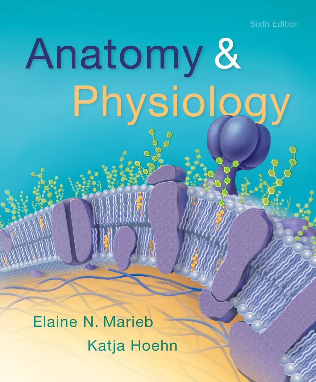 Anatomy & Physiology (eBook Rental) in 2019 | Products | Anatomy