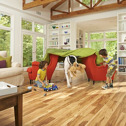 Sugar House Maple Textured Laminate Floor Light Maple Wood Finish 10mm 2 Strip Plank L Buffalo Chicken Dip Recipe Living Room Flooring Wood Floors Wide Plank