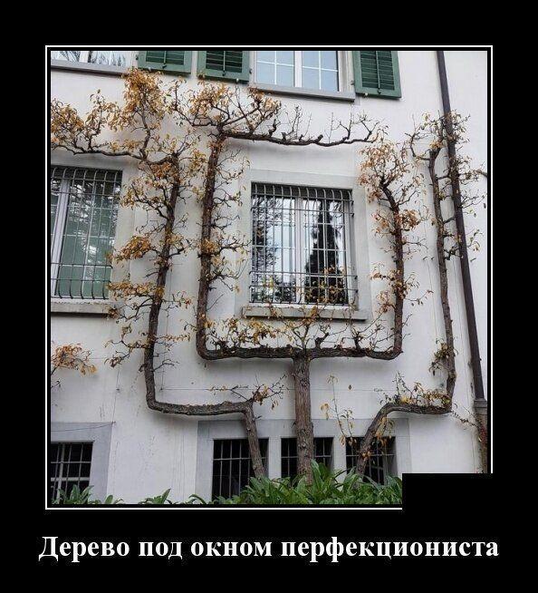 #юмор #прикол #мемы #демотиватор #ржачь #смех #анекдот ...