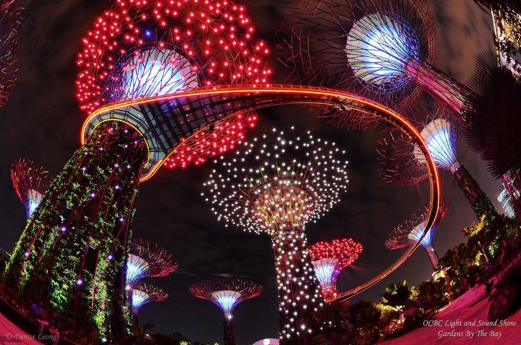 e3eb52b0f0f18a5d0fcd8a2288bd7de0 - Gardens By The Bay Christmas Light Show