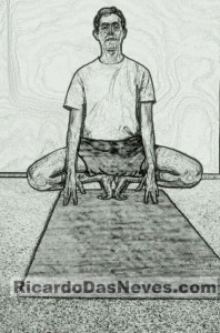 visual yoga blog the grounded butterfly pose  ricardo