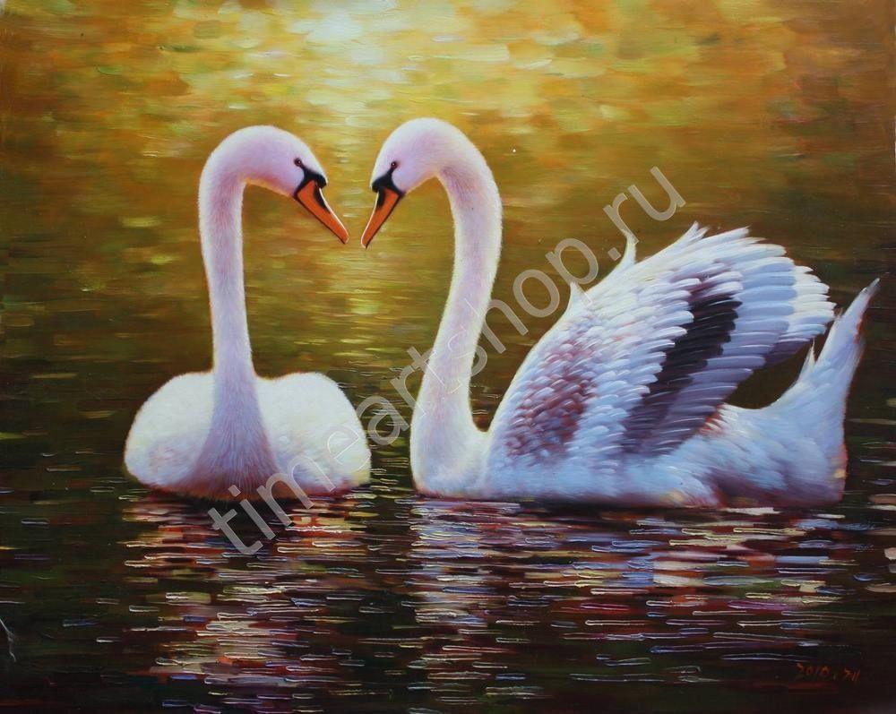 Прекрасные лебеди, 750 руб. картина раскраска по номерам ...