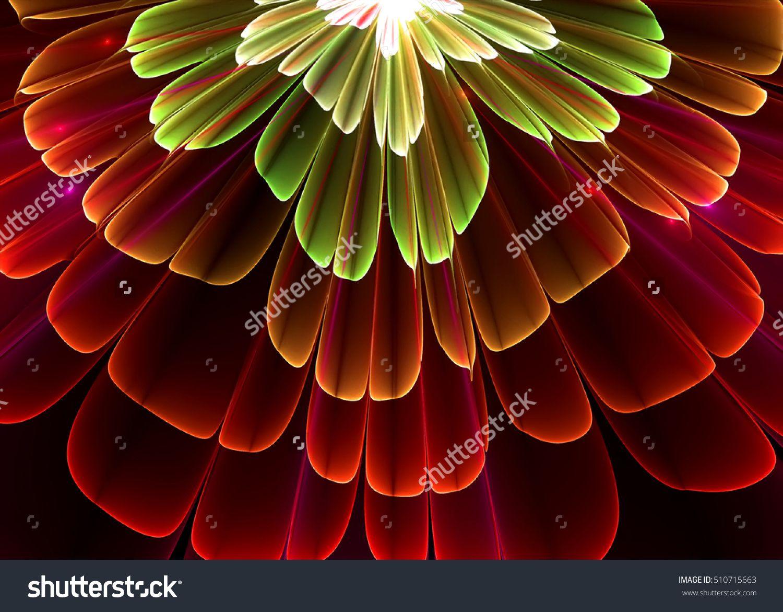Fractal pellucid floral background fractal art fractal flower