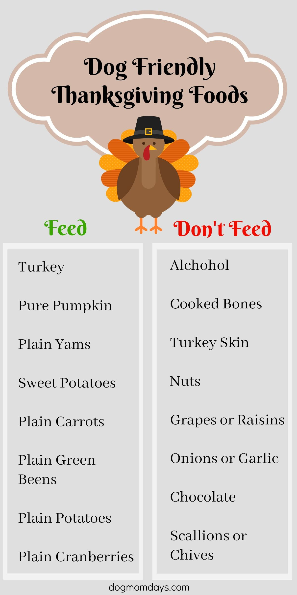 How to include your dog in thanksgiving dog nutrition