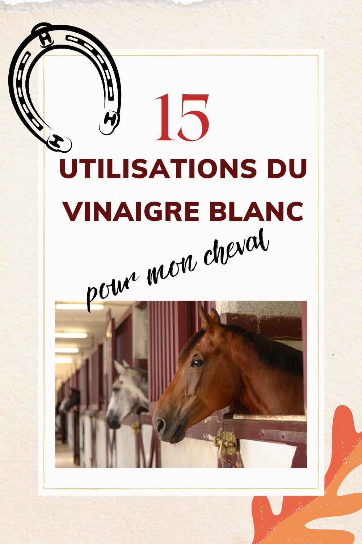 15 Utilisations du Vinaigre Blanc à l'Écurie