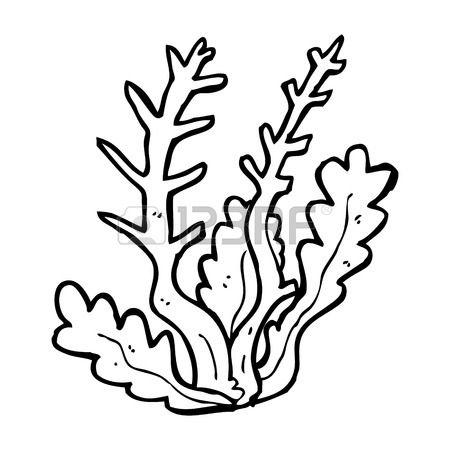 Cartoon Algen Mermaid Coloring Pages Coloring Pages Sea Plants
