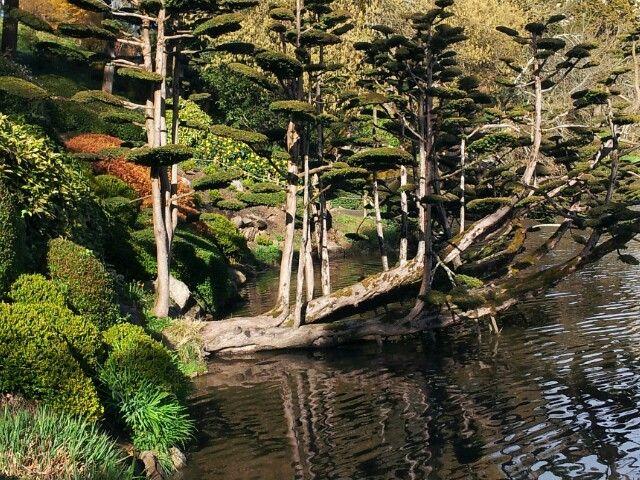 Superbe jardin japonais (Maulévrier - mars 2014)