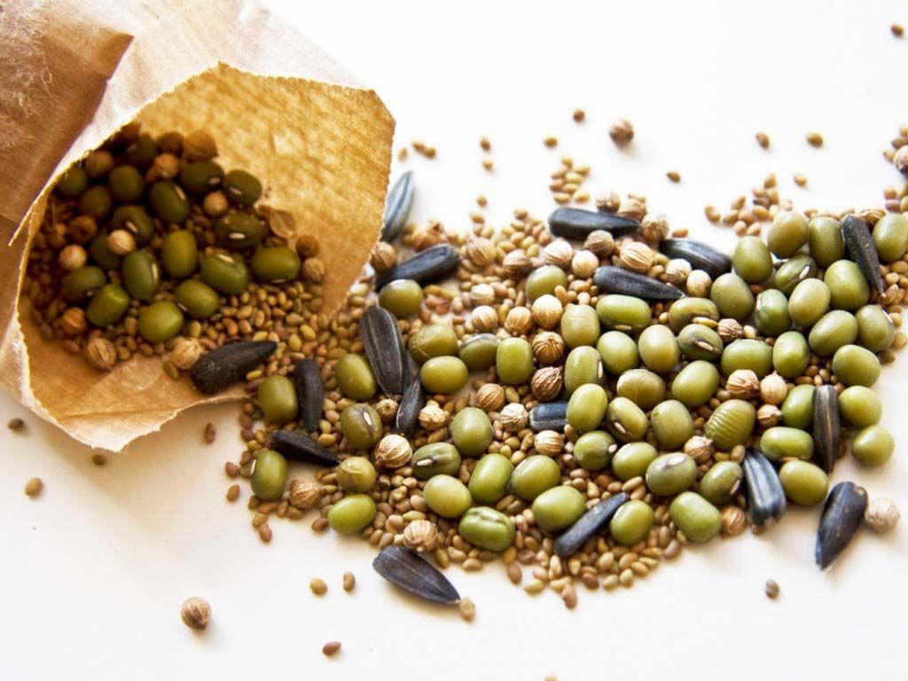 Вниманию производителей, заготовителей семян сельскохозяйственных растений: повторение — мать учения