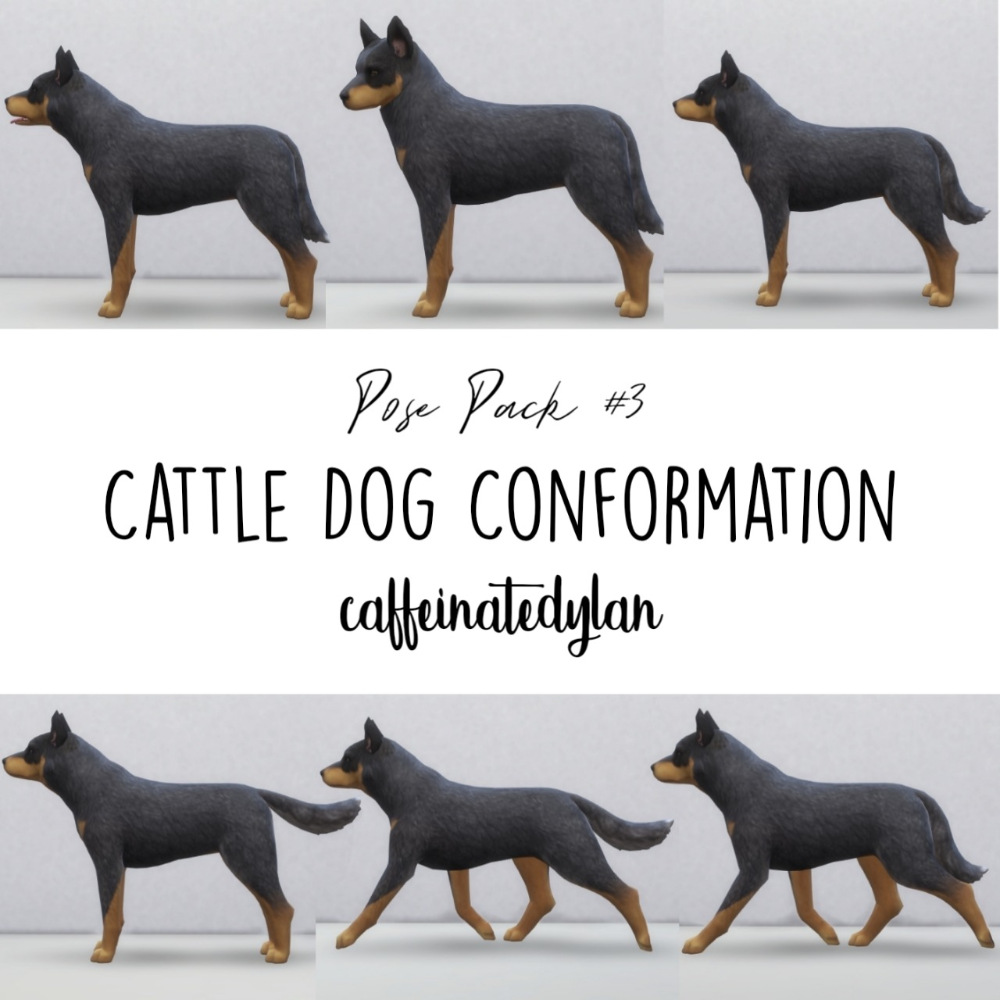 Sims 4 Poses — Australian Cattle Dog Conformation Poses