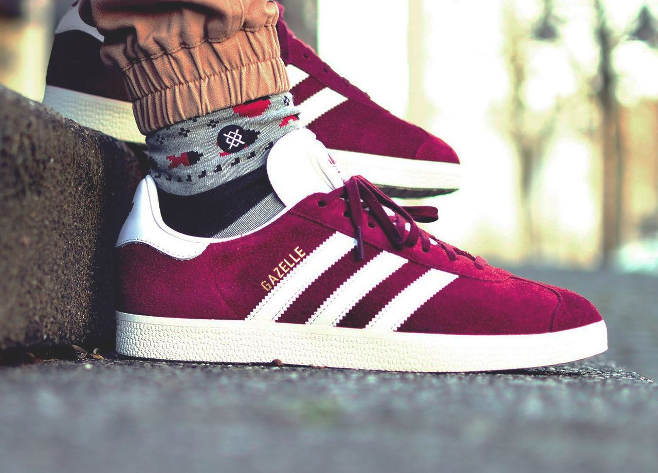collegiate burgundy gazelle