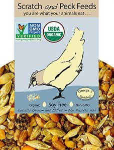 Organic Chicken Feed What To Know Before Buying In 2020 Organic