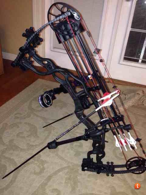 Hoyt Carbon Spyder Vicxen Yes Please Hoyt Bows Sling Bow Archery Equipment