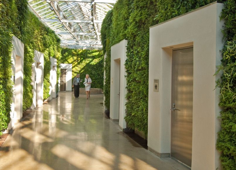 Exterior Garden Wall Indoor Vertical Wall Garden Melbourne Urban