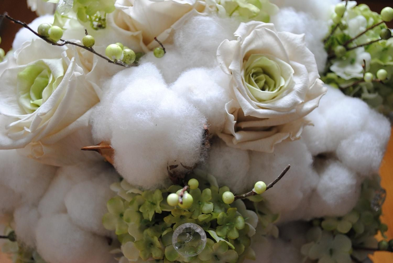 Cotton!