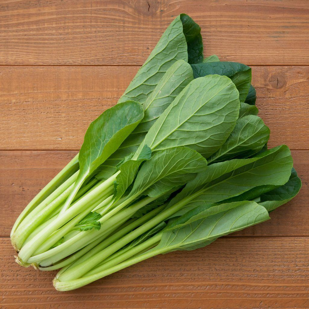 Mustard Komatsuna Brassica Juncea Brassica Juncea Brassica Vegetable Seed