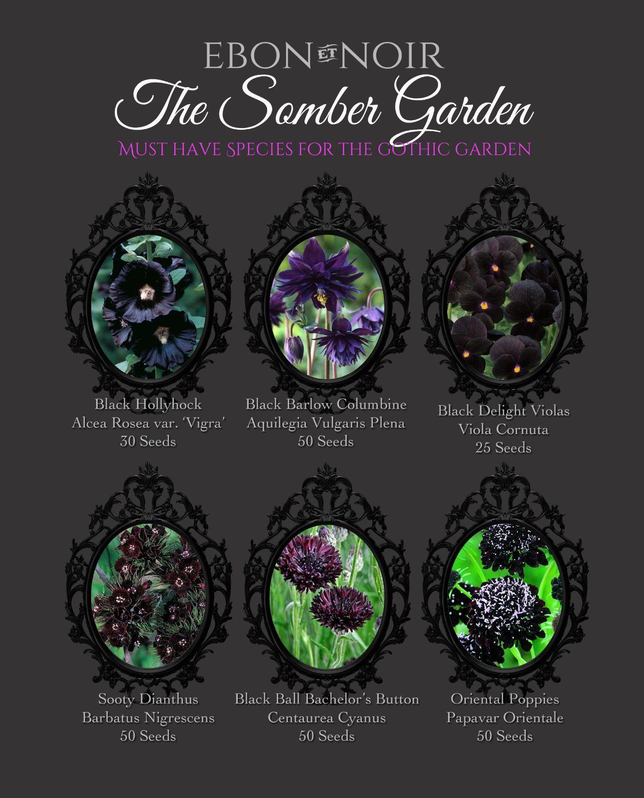 Billedresultat For Gothic Garden