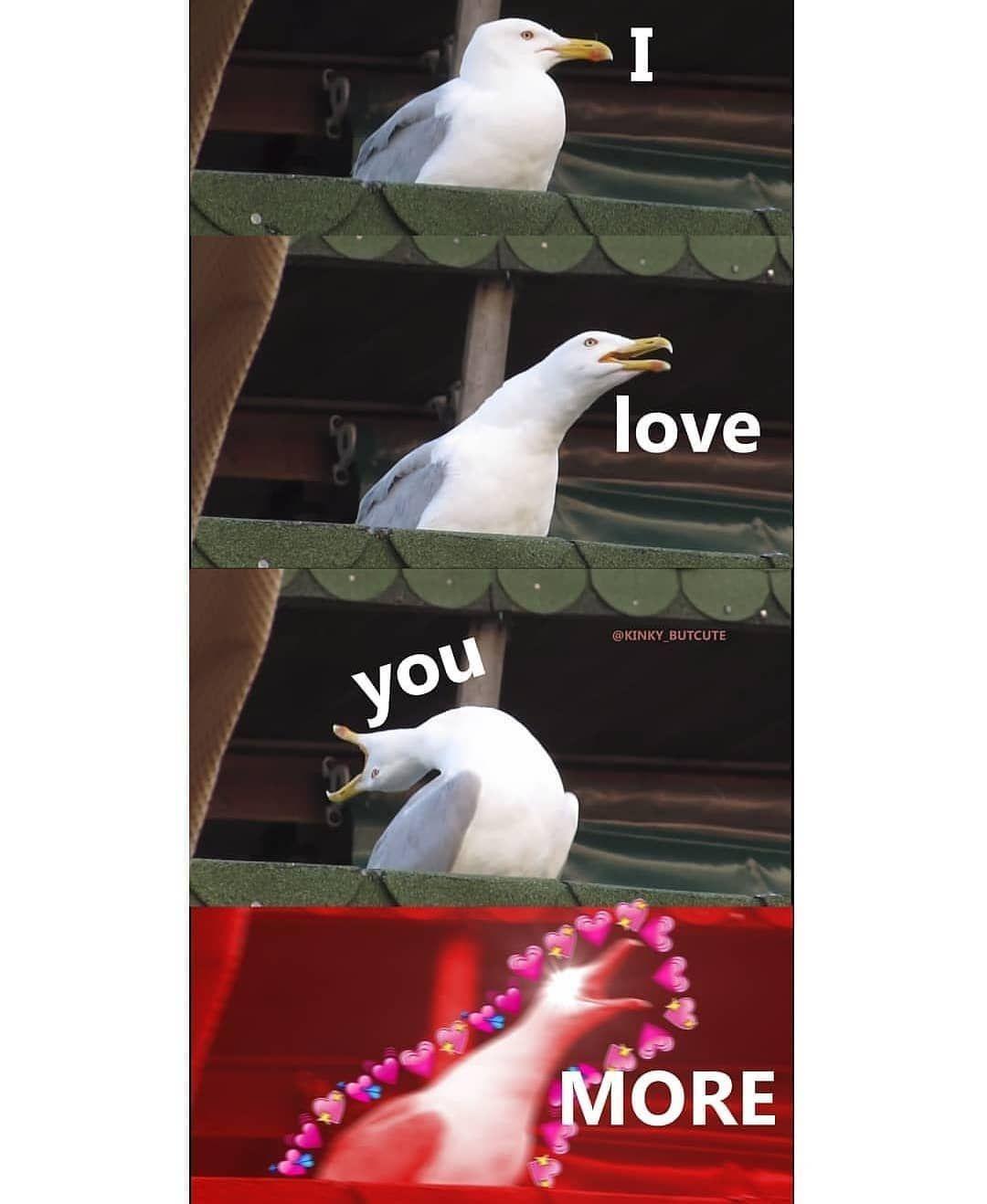 Grayson On Instagram That S It I Love You More I Love You Memes Otuziki Blog Cute Love Memes Love You Meme Cute Memes