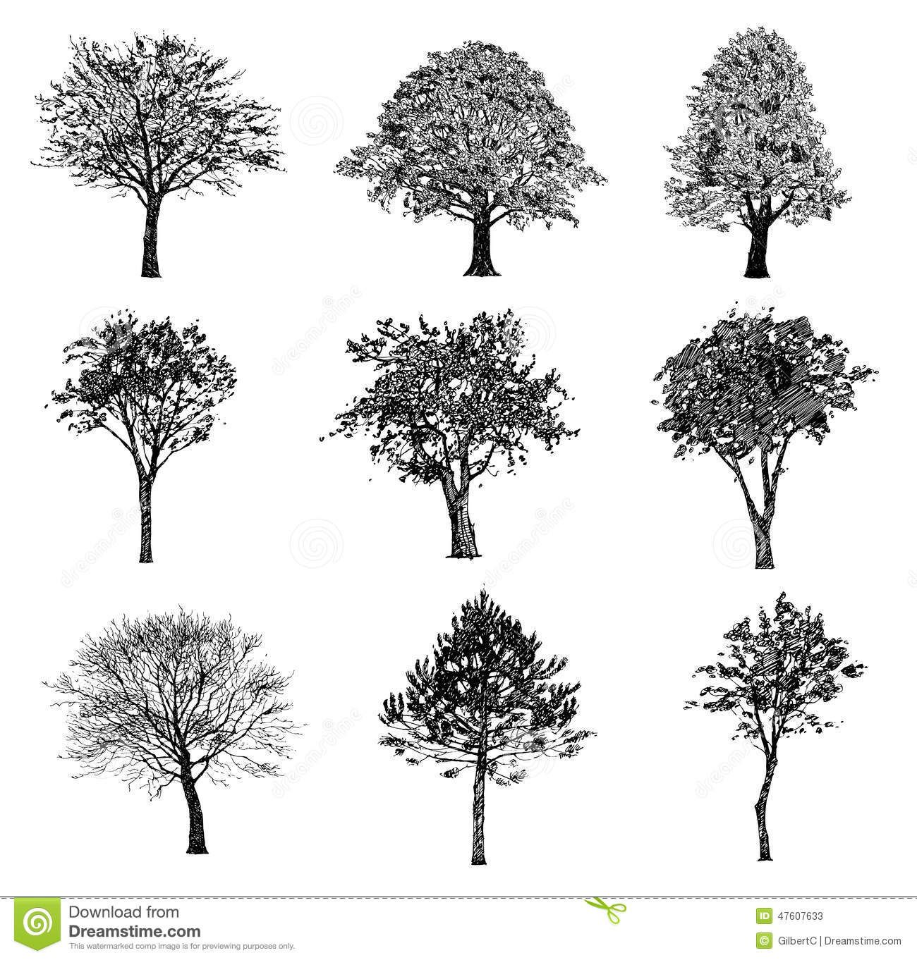 Set Hand Drawn Trees Drawing Illustration Vector 47607633 Jpg 1300 1362 Realistic Drawings Tree Sketches Tree Drawing
