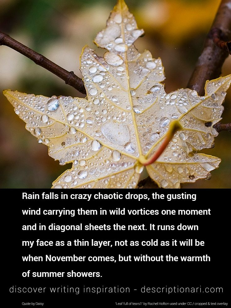 Rain - Quotes And Descriptions To Inspire Creative Writing