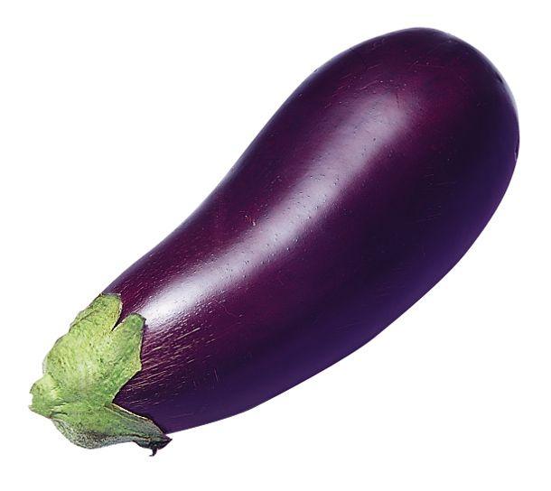 Eggplant Eggplant Roast Eggplant