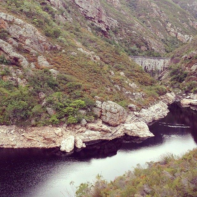 Fernkloof Nature Reserve, Hermanus Morning hike #latergram
