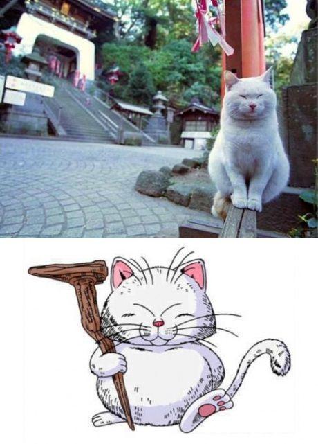 Ahahahaha, Korin. This is too funny and cute.