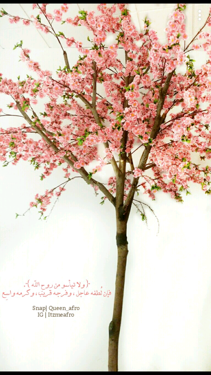 Image uploaded by ﭬژۆפھَہّ. Find images and videos about