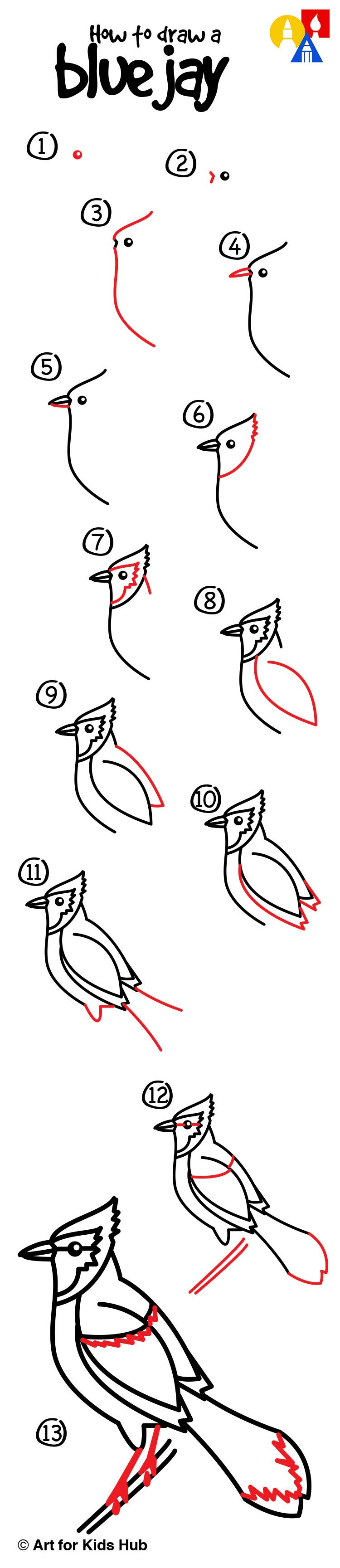 How To Draw A Hummingbird  How To Draw A Blue Jay For Kids!