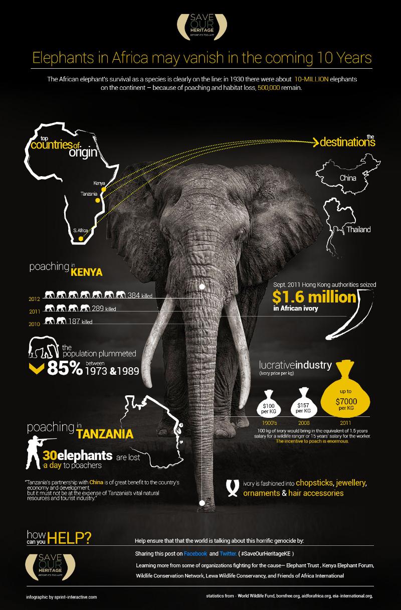 African Elephants Population Statistics
