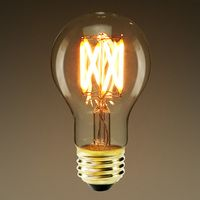 Led A19 4 5 Watt 60w Incandescent Equal 350 Lumens 2200 Kelvin Warm White Filament Type Color Corr Victorian Light Bulbs Vintage Light Bulbs Bulb